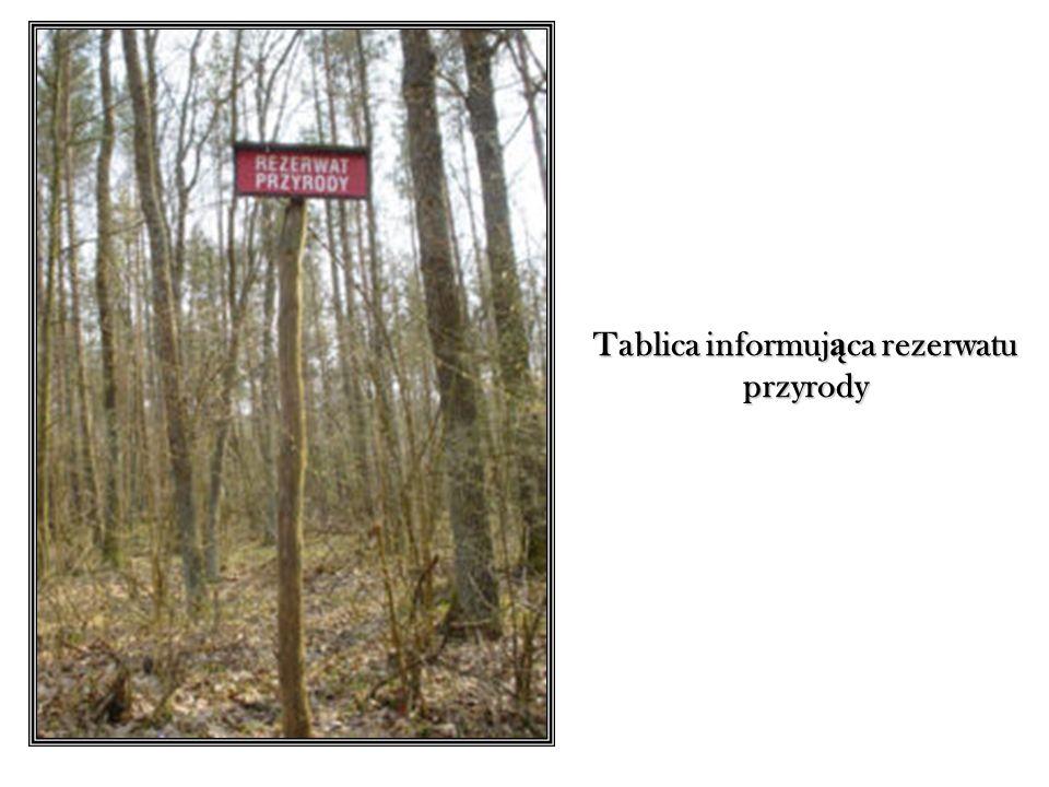 Tablica informująca rezerwatu przyrody