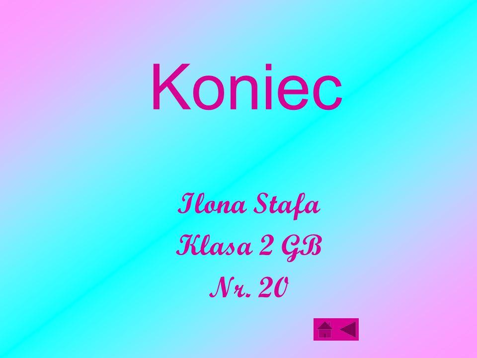Koniec Ilona Stafa Klasa 2 GB Nr. 20