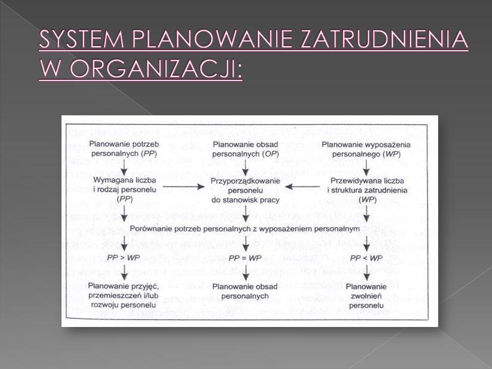 SYSTEM PLANOWANIE ZATRUDNIENIA W ORGANIZACJI: