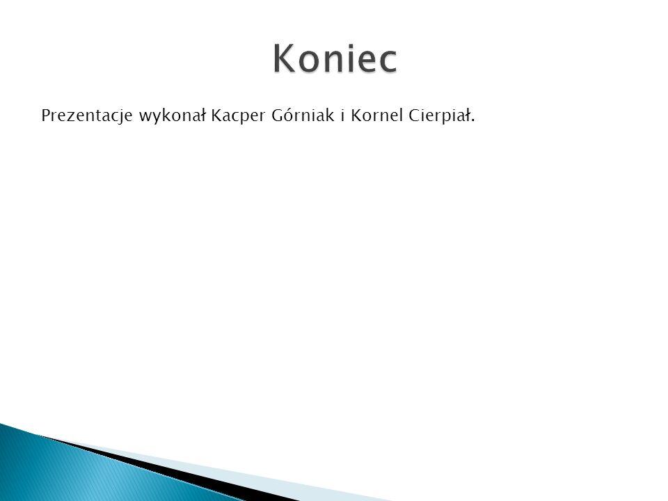 Koniec Prezentacje wykonał Kacper Górniak i Kornel Cierpiał.