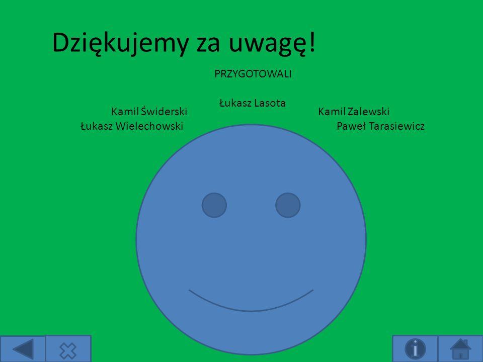 Dziękujemy za uwagę! PRZYGOTOWALI Łukasz Lasota Kamil Świderski
