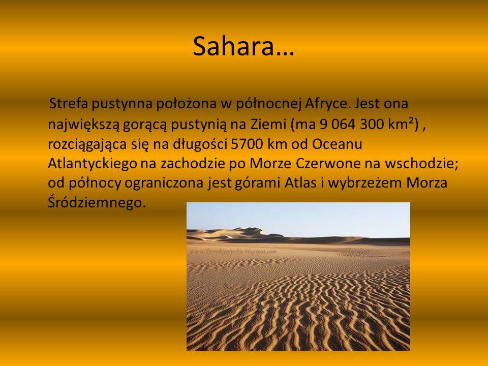Sahara…