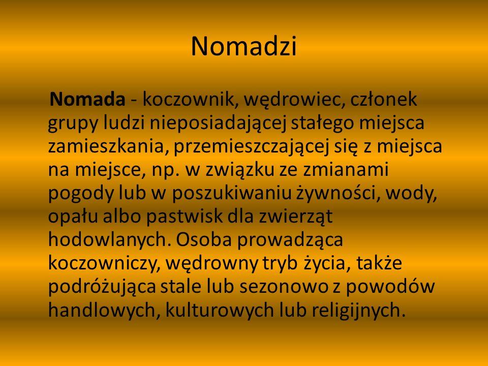 Nomadzi