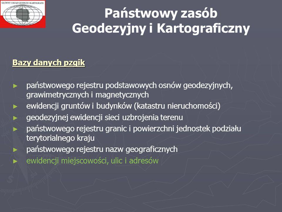 Geodezyjny i Kartograficzny