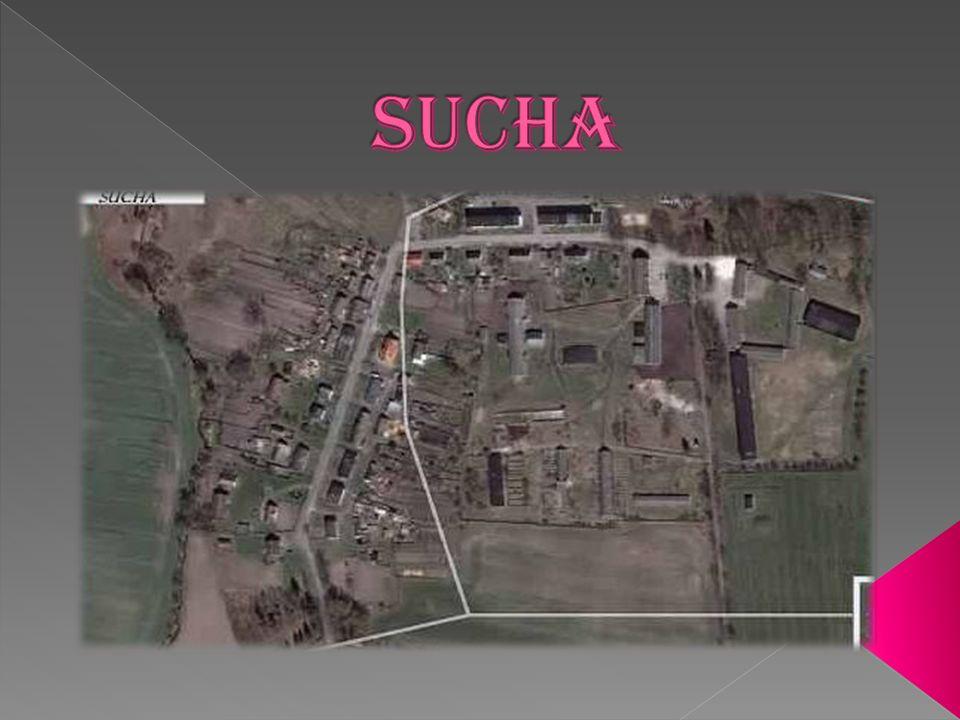 Sucha