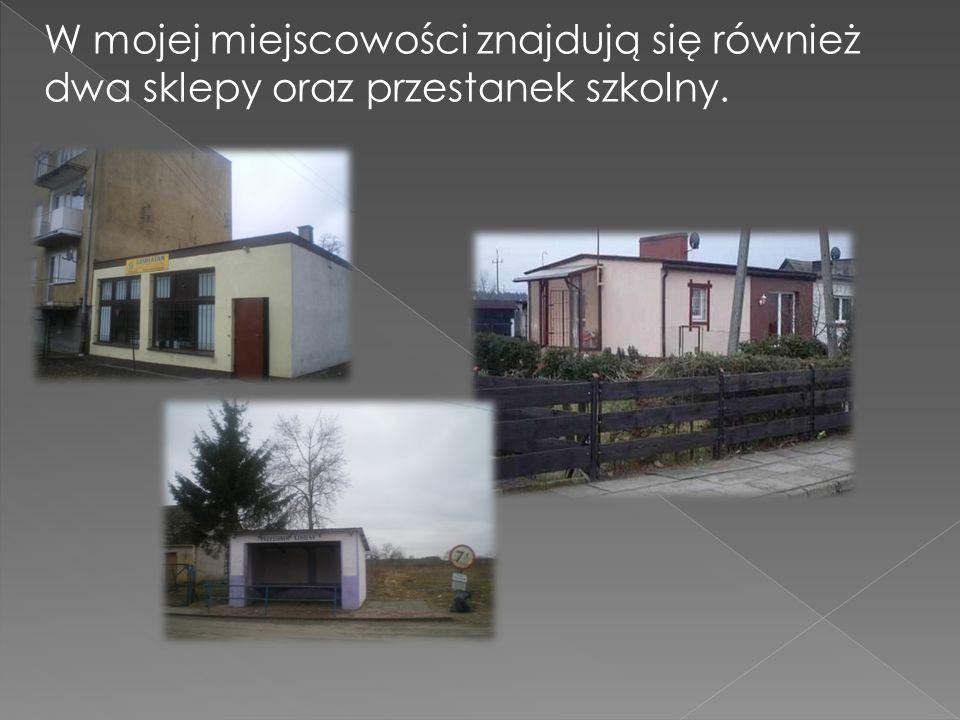 W mojej miejscowości znajdują się również dwa sklepy oraz przestanek szkolny.