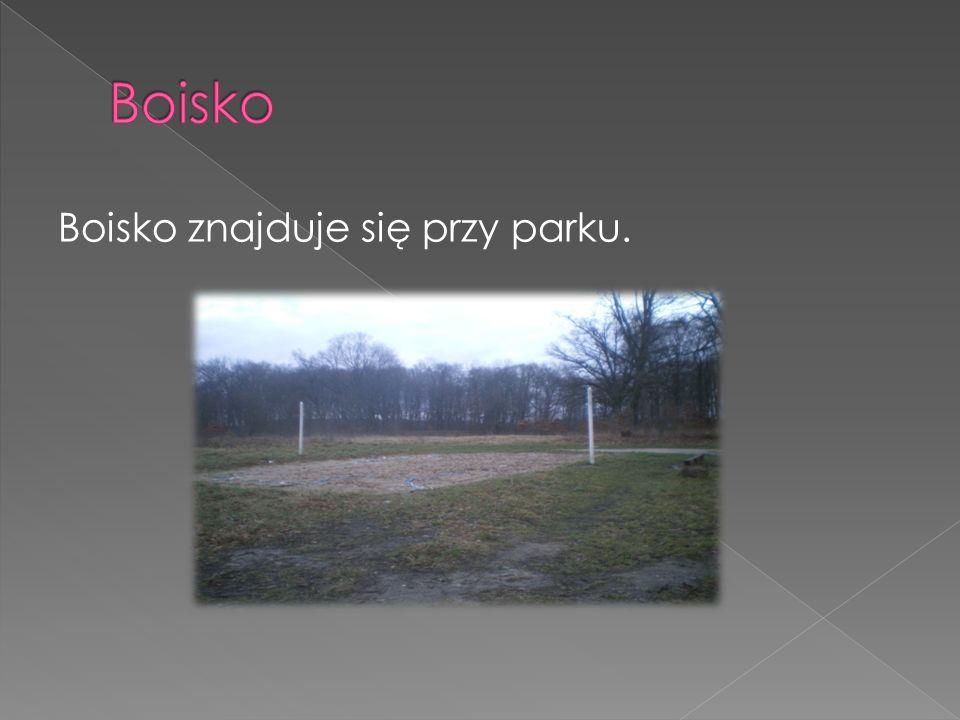 Boisko Boisko znajduje się przy parku.