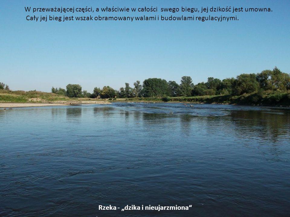 """Rzeka - """"dzika i nieujarzmiona"""