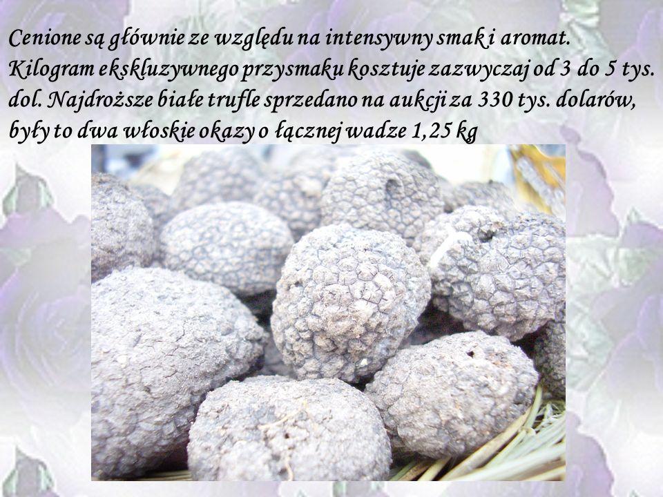 Cenione są głównie ze względu na intensywny smak i aromat
