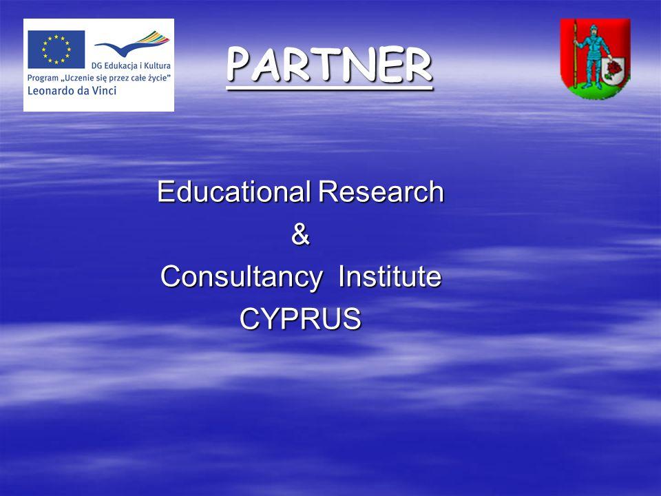 Consultancy Institute
