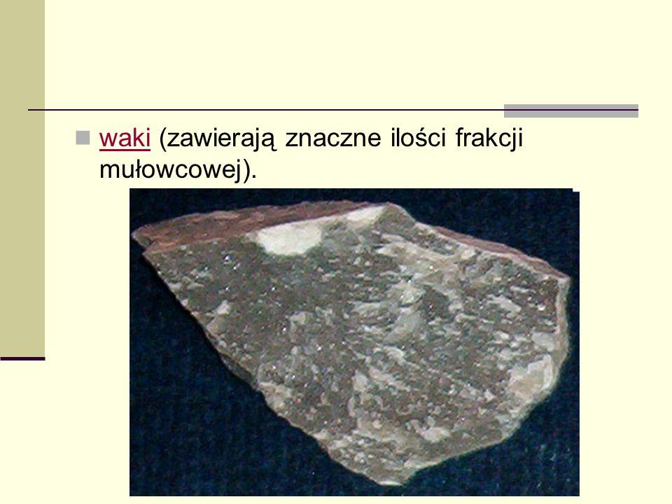 waki (zawierają znaczne ilości frakcji mułowcowej).