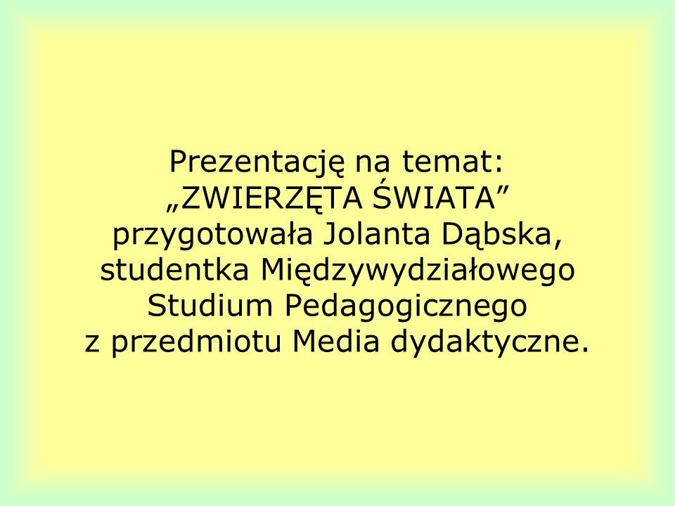 """Prezentację na temat: """"ZWIERZĘTA ŚWIATA przygotowała Jolanta Dąbska, studentka Międzywydziałowego Studium Pedagogicznego z przedmiotu Media dydaktyczne."""