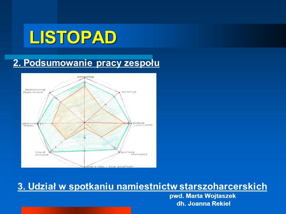 LISTOPAD 2. Podsumowanie pracy zespołu