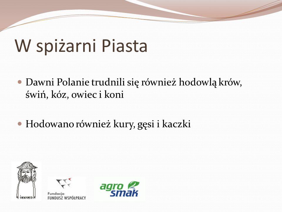 W spiżarni Piasta Dawni Polanie trudnili się również hodowlą krów, świń, kóz, owiec i koni.