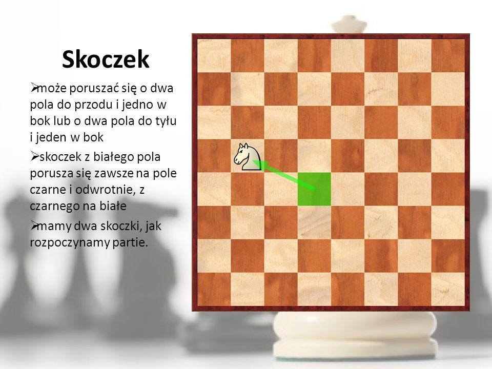 Skoczek może poruszać się o dwa pola do przodu i jedno w bok lub o dwa pola do tyłu i jeden w bok.
