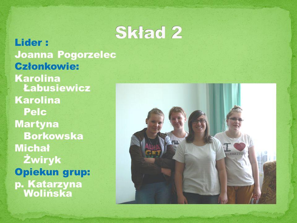 Skład 2 Lider : Joanna Pogorzelec Członkowie: Karolina Łabusiewicz Karolina Pelc Martyna Borkowska Michał Żwiryk Opiekun grup: p.