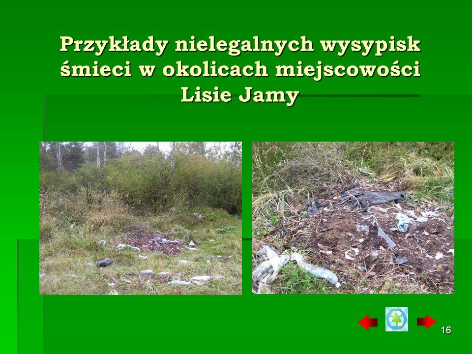 Przykłady nielegalnych wysypisk śmieci w okolicach miejscowości Lisie Jamy