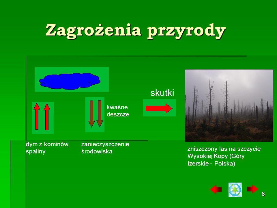 Zagrożenia przyrody skutki kwaśne deszcze dym z kominów, spaliny