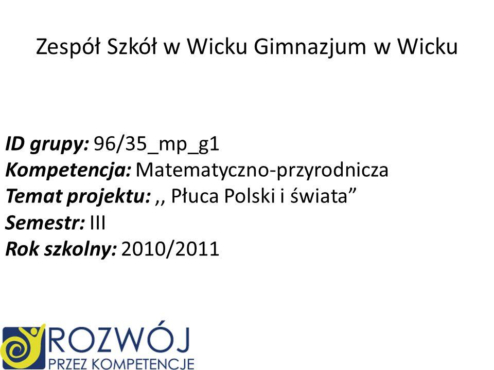 Zespół Szkół w Wicku Gimnazjum w Wicku