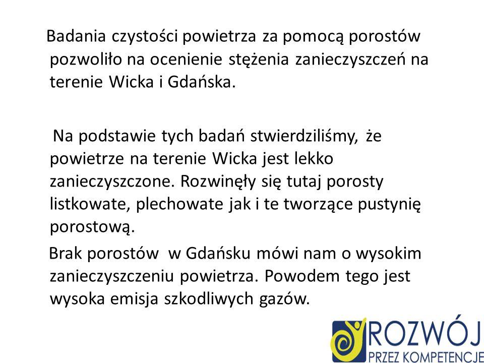 Badania czystości powietrza za pomocą porostów pozwoliło na ocenienie stężenia zanieczyszczeń na terenie Wicka i Gdańska.