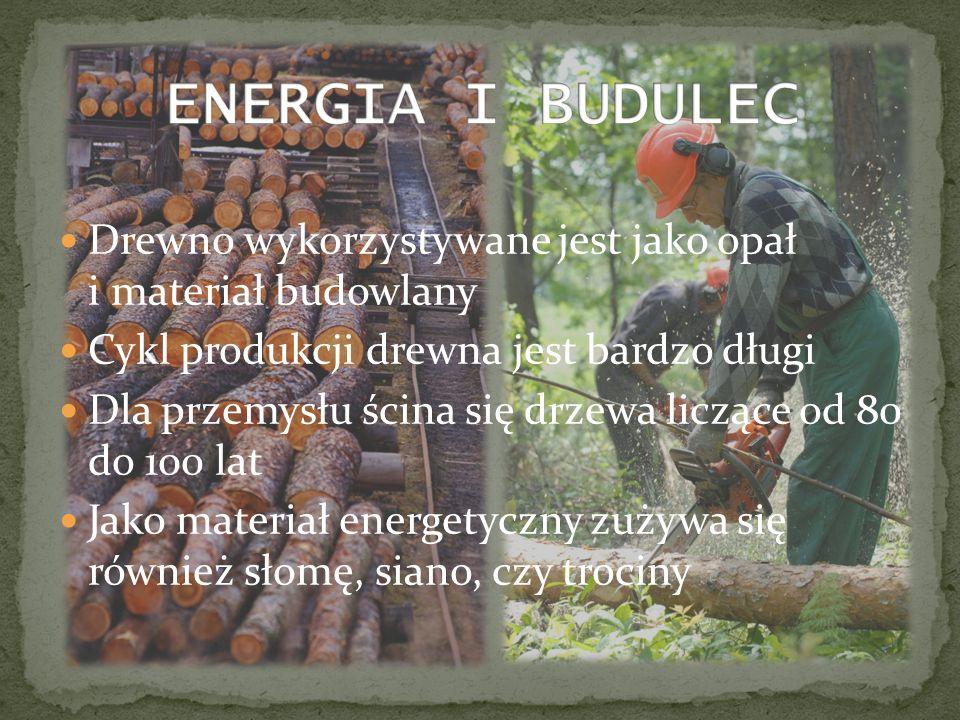 ENERGIA I BUDULEC Drewno wykorzystywane jest jako opał i materiał budowlany. Cykl produkcji drewna jest bardzo długi.
