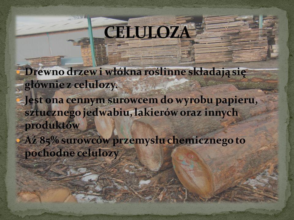 CELULOZA Drewno drzew i włókna roślinne składają się głównie z celulozy.