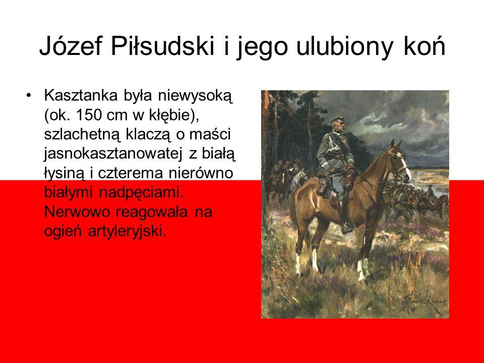 Józef Piłsudski i jego ulubiony koń