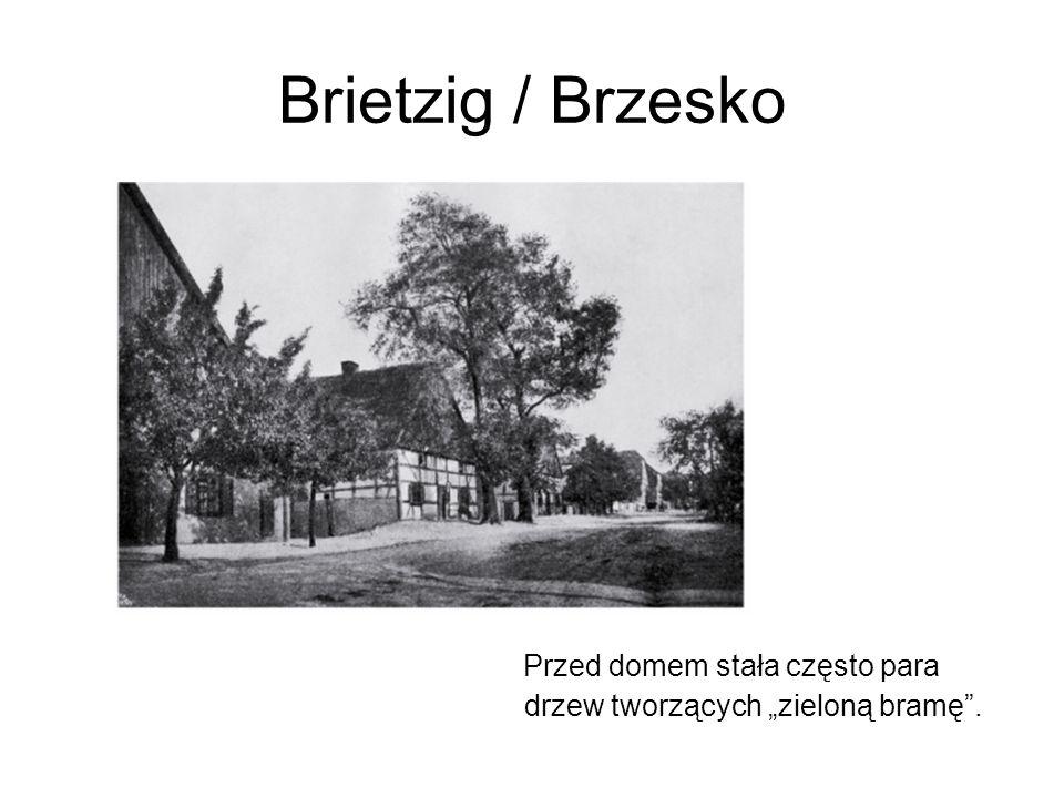 """Brietzig / Brzesko Przed domem stała często para drzew tworzących """"zieloną bramę ."""