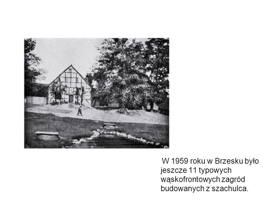 W 1959 roku w Brzesku było jeszcze 11 typowych wąskofrontowych zagród budowanych z szachulca.