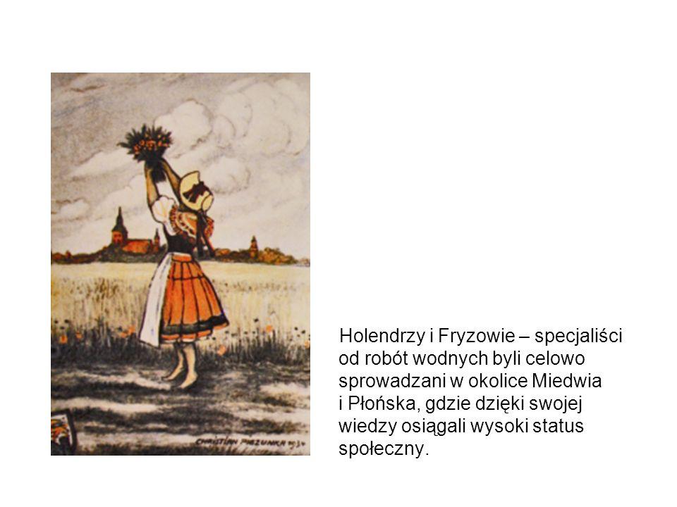 Holendrzy i Fryzowie – specjaliści od robót wodnych byli celowo sprowadzani w okolice Miedwia i Płońska, gdzie dzięki swojej wiedzy osiągali wysoki status społeczny.