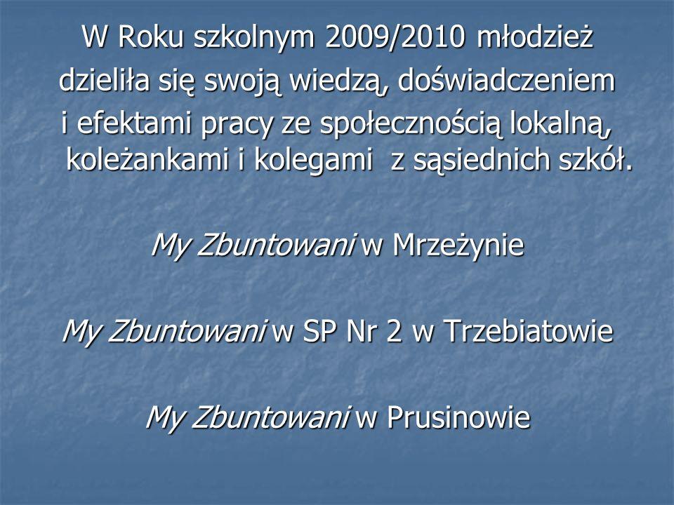 W Roku szkolnym 2009/2010 młodzież