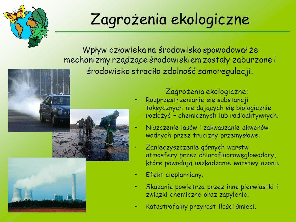 Zagrożenia ekologiczne