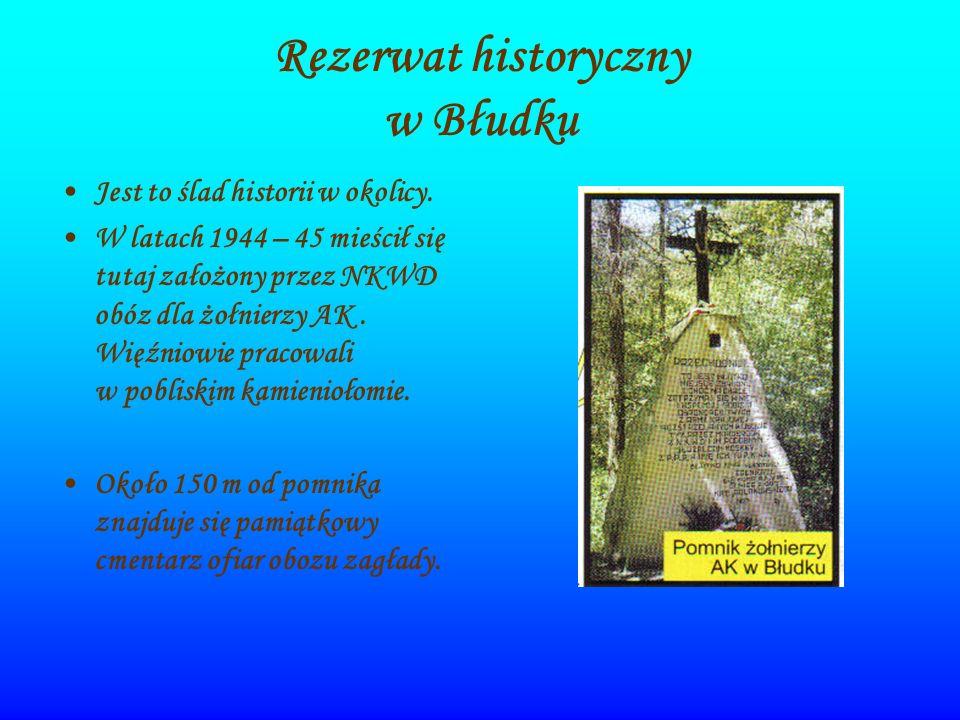 Rezerwat historyczny w Błudku