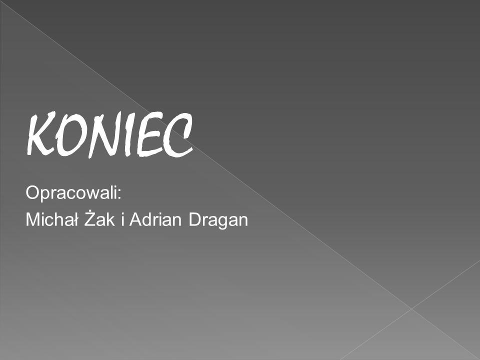 KONIEC Opracowali: Michał Żak i Adrian Dragan