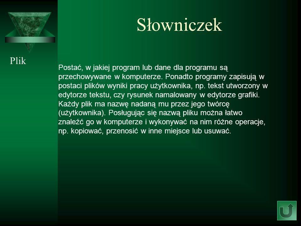 Słowniczek Plik.