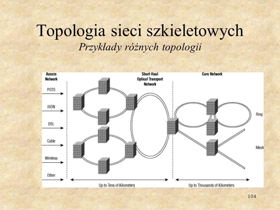 Topologia sieci szkieletowych Przykłady różnych topologii