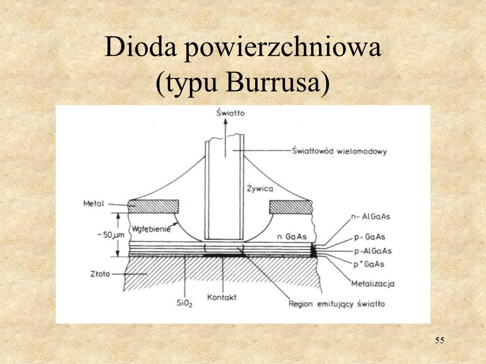 Dioda powierzchniowa (typu Burrusa)