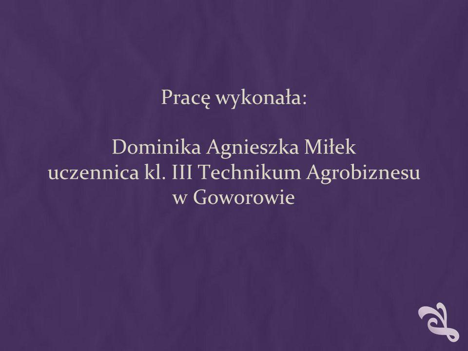 Pracę wykonała: Dominika Agnieszka Miłek uczennica kl