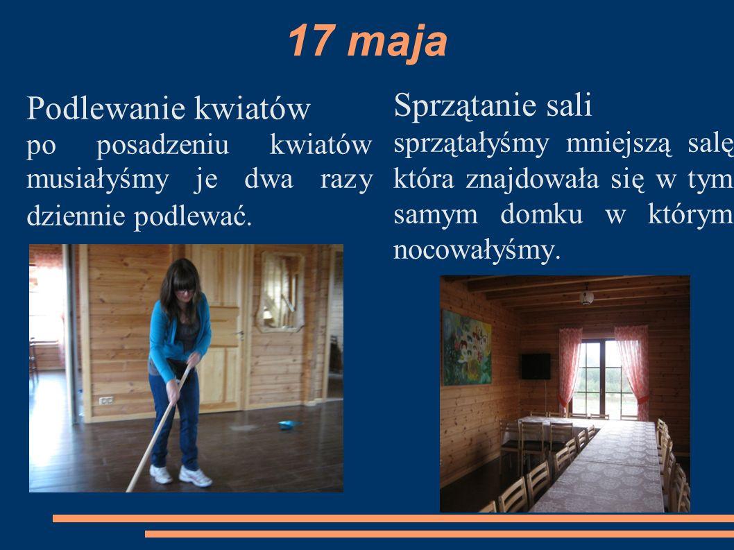 17 maja Sprzątanie sali Podlewanie kwiatów