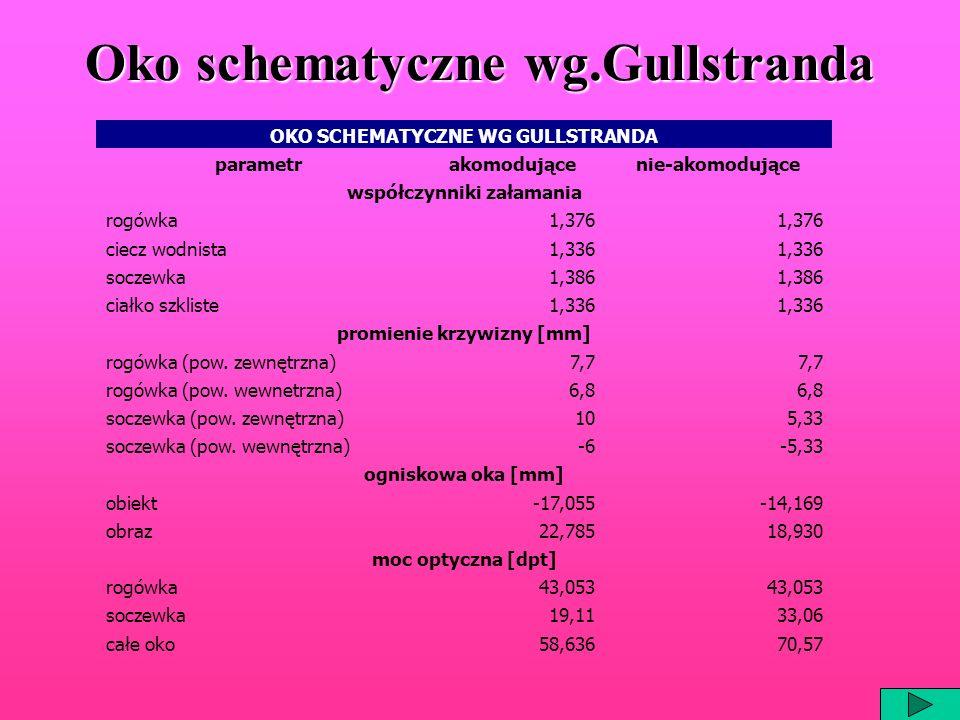 Oko schematyczne wg.Gullstranda