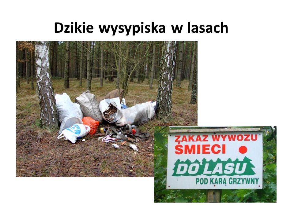 Dzikie wysypiska w lasach