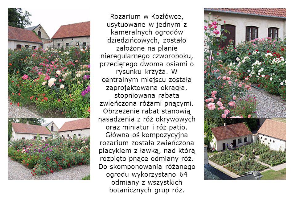 Rozarium w Kozłówce, usytuowane w jednym z kameralnych ogrodów dziedzińcowych, zostało założone na planie nieregularnego czworoboku, przeciętego dwoma osiami o rysunku krzyża.