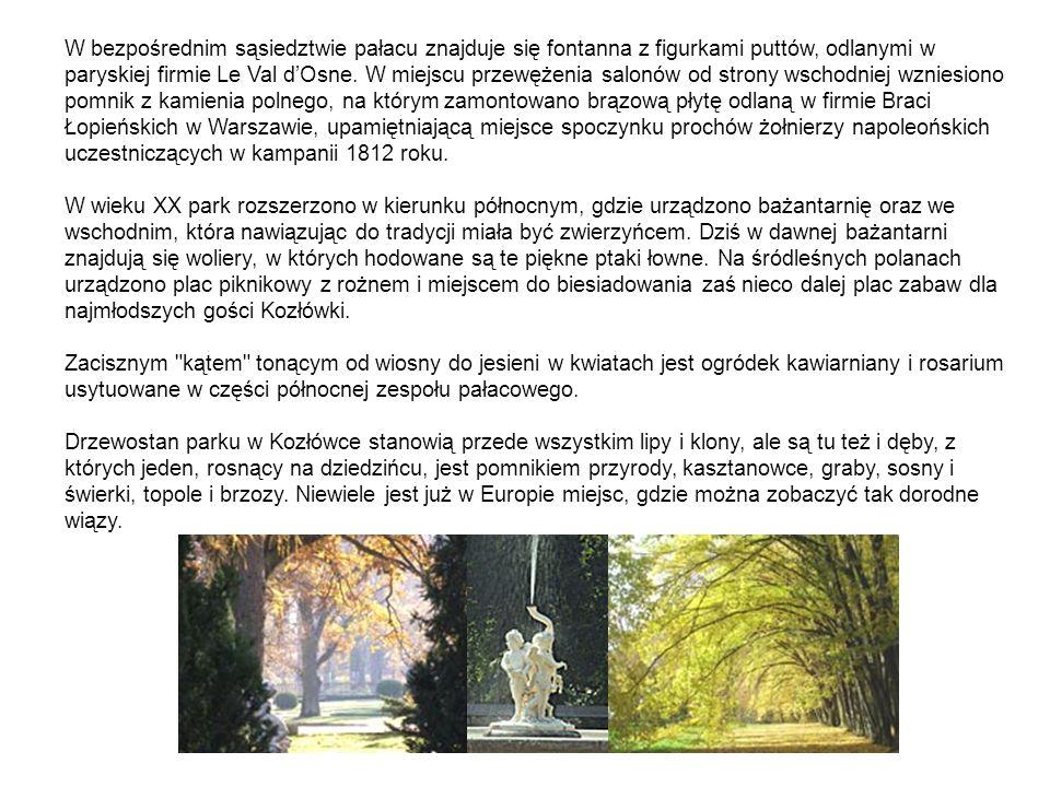 W bezpośrednim sąsiedztwie pałacu znajduje się fontanna z figurkami puttów, odlanymi w paryskiej firmie Le Val d'Osne. W miejscu przewężenia salonów od strony wschodniej wzniesiono pomnik z kamienia polnego, na którym zamontowano brązową płytę odlaną w firmie Braci Łopieńskich w Warszawie, upamiętniającą miejsce spoczynku prochów żołnierzy napoleońskich uczestniczących w kampanii 1812 roku.