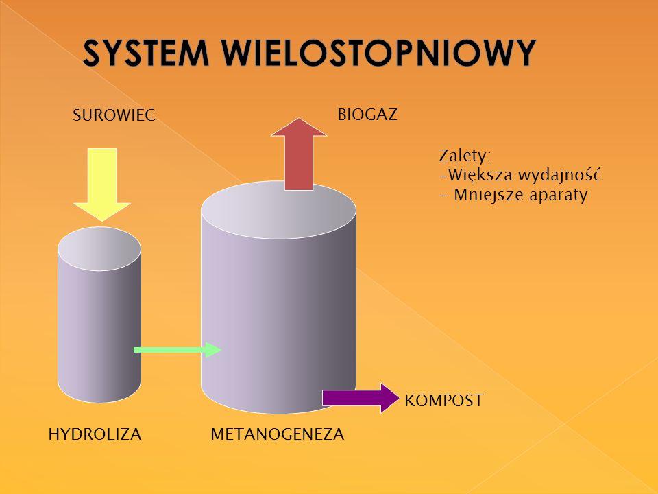 SYSTEM WIELOSTOPNIOWY