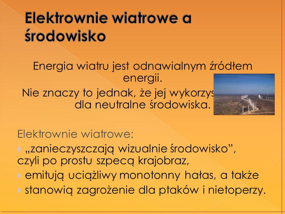 Elektrownie wiatrowe a środowisko