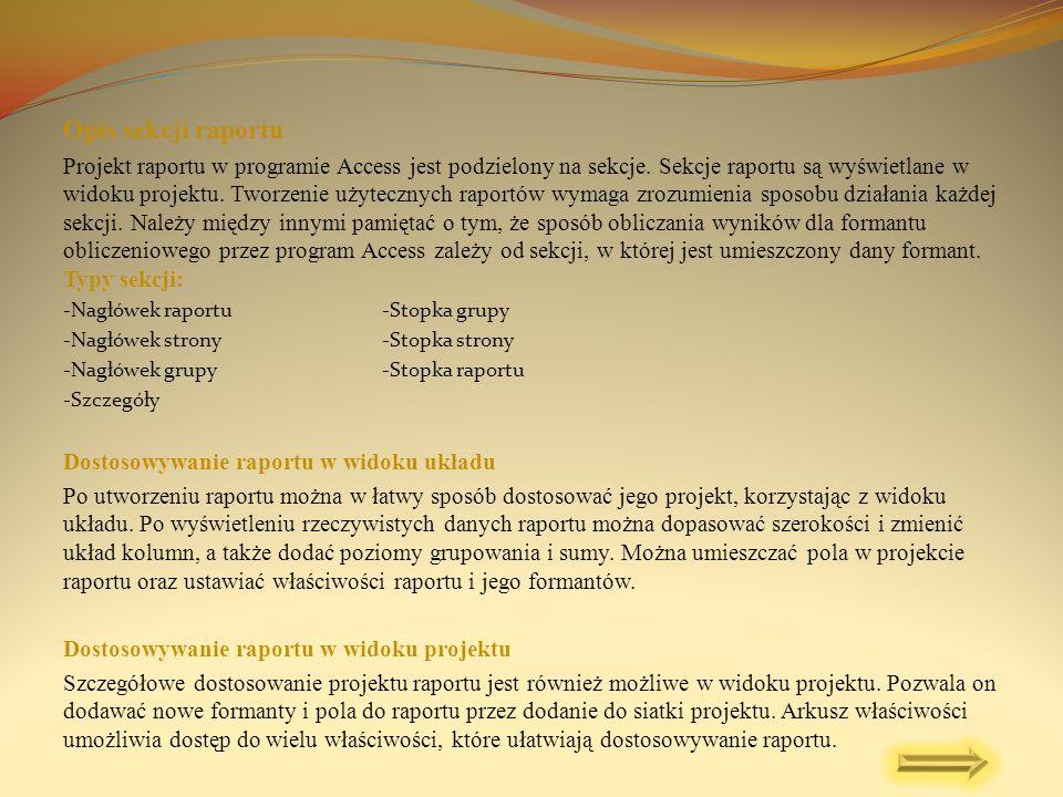 Opis sekcji raportu