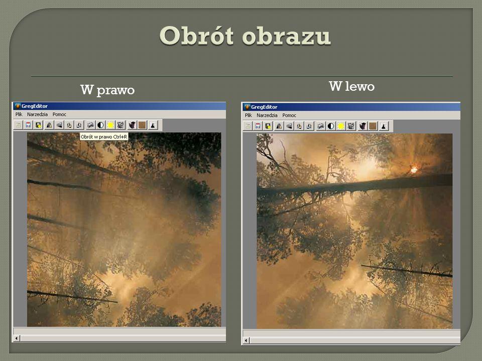 Obrót obrazu W lewo W prawo