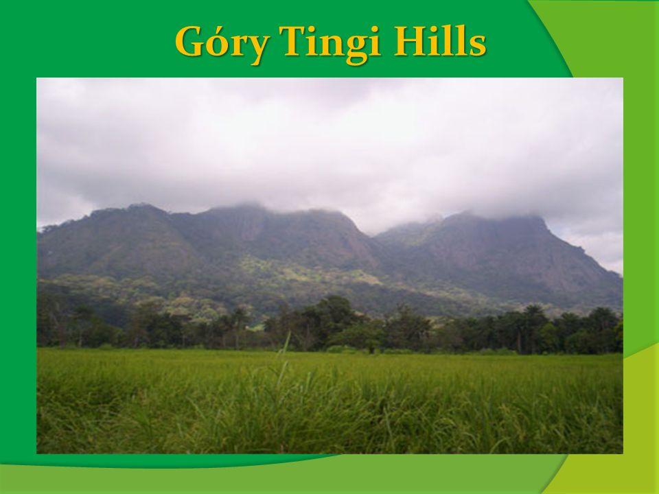 Góry Tingi Hills