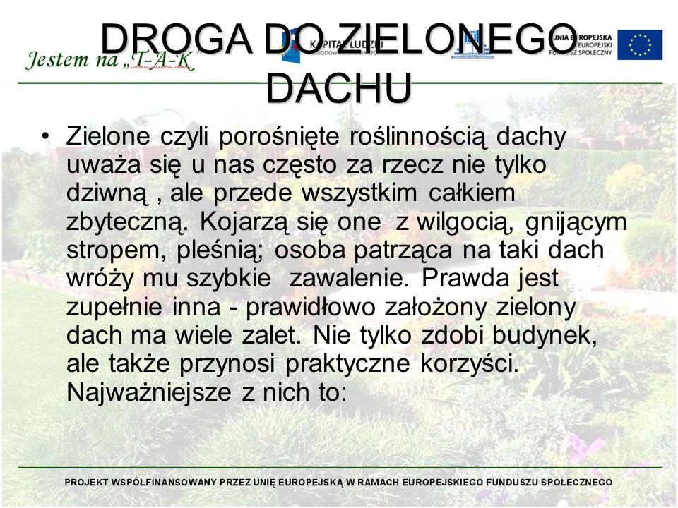 DROGA DO ZIELONEGO DACHU