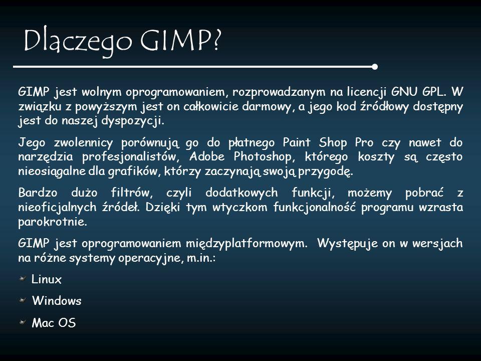 Dlaczego GIMP